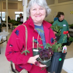 A customer at last year's Green Thumb Plant Sale in Belfast.