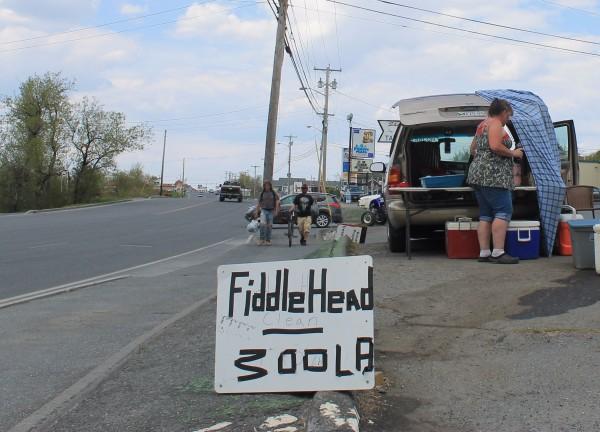 Presque Isle mulls regulation of street vendors — Aroostook ...
