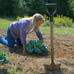 Owners of oldest greenhouse north of Portland have seasoned gardening advice