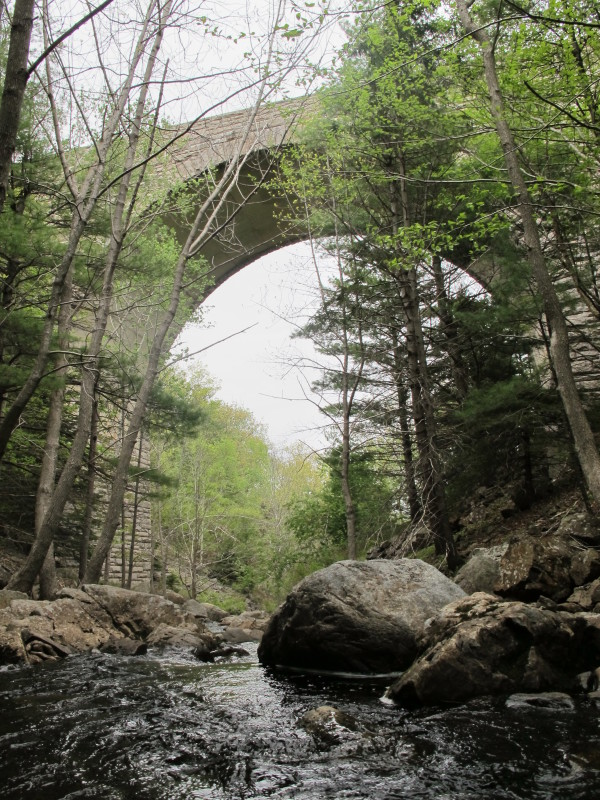 Acadia National Park officials hope to re-point masonry on Duck Brook Bridge this year but have to look into whether the project might adversely affect bats that may be living inside the structure.