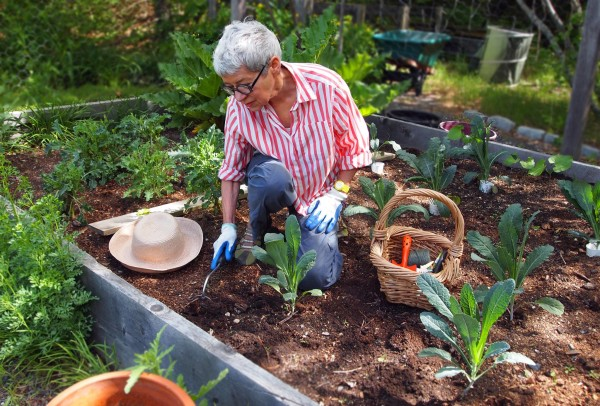 Basic gardening moves, such as planting and weeding, burn up to 175 calories a half hour.