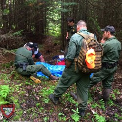 Elderly man OK after wandering into Veazie woods