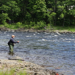 Edwards Dam success foreshadows Penobscot River project's future
