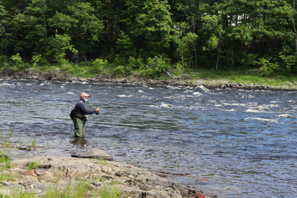 Denis Dauphinee of Bradley fishes for shad on June 10 in the Penobscot River in Old Town.