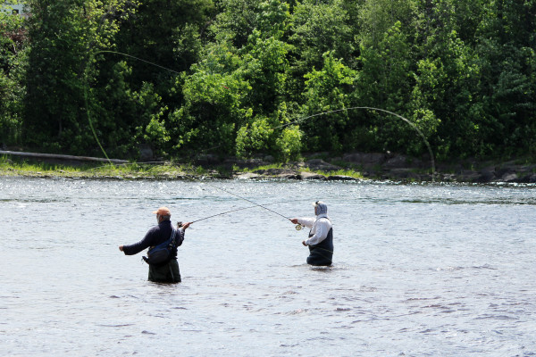 Denis Dauphinee (left) and Pete Douvarjo fish for shad on June 10 on the Penobscot River in Old Town.
