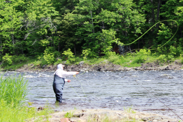Pete Douvarjo of Sedgwick casts for shad on June 10 on the Penobscot River in Old Town.