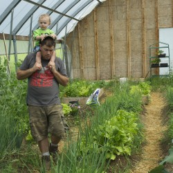 Bradley Theriault inspects one of the two greenhouses with his son Konnor Martin on Theriault All Natural Farms in Fort Kent. Theriault runs the organic farm with Aurora Jerkins and decided not to renew their MOFGA certification this year.
