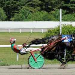 Sanford harness racing driver records 11,000th career victory