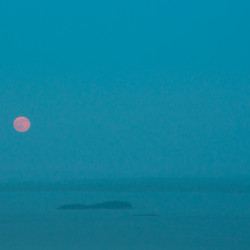 'Blue Moon' over Brewer
