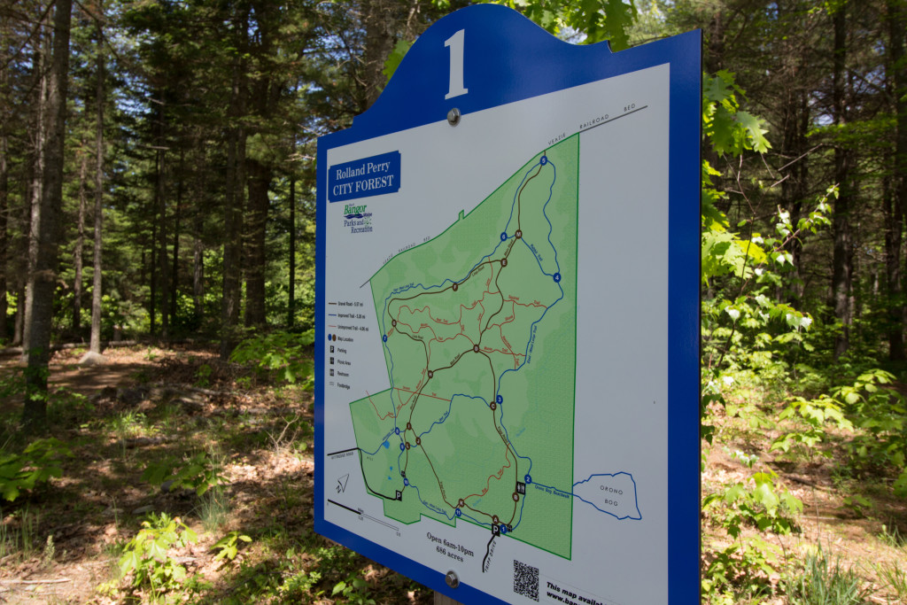The new Bangor City Forest trail map displays! So nice...
