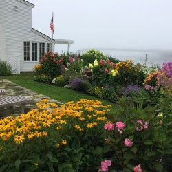 The Schwartz's Gardens in Port Clyde will be the site of the new live raffle drawing at 4 p.m. on July 10.