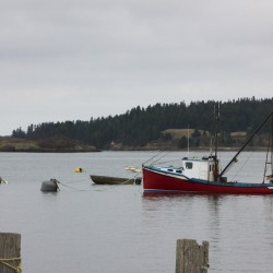 A boat sits at its mooring off downtown Lubec, Nov. 12, 2015.