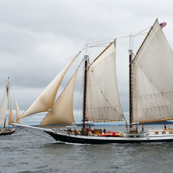 Maine windjammers will parade off Rockland on July 13