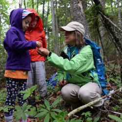 """Maine Master Naturalist Merrie Eley, a Blue Hill Heritage Trust volunteer, gives Nayeli Monahan (center), 6, a taste of Indian cucumber on the """"Secrets and Surprises of the Forest at Kingdom Woods"""" hiking event Friday morning. Far left is Finn Monahan and right in red is Hank Harp. The Blue Hill Heritage Trust is a local land trust on the peninsula consisting of more than 7,200 acres of conserved land. Their outreach committee plans free, year-round, public events, such as hikes, environmental education, nature walks and much more."""