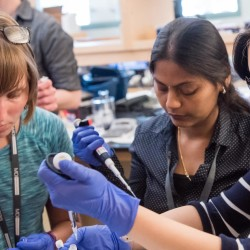 """Students perform a laboratory procedure at the recent course, """"Comparative and Experimental Approaches to Aging Biology Research,"""" at the MDI Biological Laboratory in Salisbury Cove. Shown, left to right, are Aubrey Sirman of North Dakota State University, Asha Kiran Akula of the Leibniz Institute on Aging in Jena, Germany and Ee Phie Tan of the University of Kansas Medical Center."""