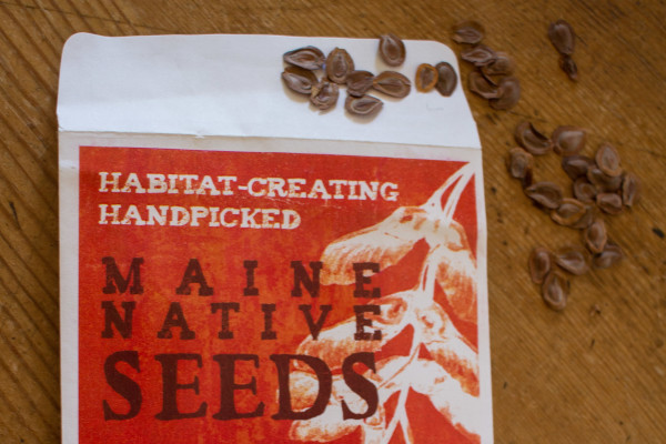 The Wild Seed Project is a Maine nonprofit organization that provides people with information about growing native plants in their gardens and around their homes. The organization also has an online seed sale of up to 60 different species of plants native to the area.