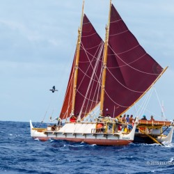 Hokulea, seen in this 2015 photo, is a traditional Polynesian voyaging canoe. The vessel, which started its voyage from Hawaii, is scheduled to arrive on Mount Desert Island.