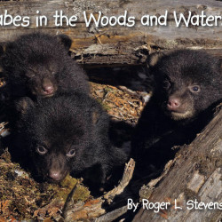 """Babes in the Woods and Waters"" by Roger L. Stevens Jr. of Lincoln"