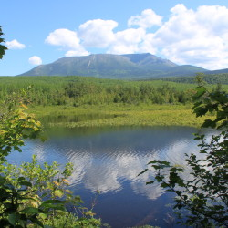 Mount Katahdin reflects in a pond by the Abol Stream Trail in Baxter State Park, June 20, 2013.