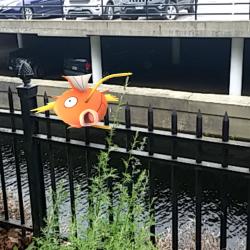 Pokemon Fun at the Winslow Public Library