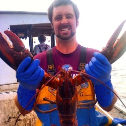 Maine lobstermen hauling soft-shell lobsters earlier than usual