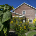 """One of three energy-efficient homes can be seen on Aug. 18 on Fern Street in Bangor. Bob and Suzanne Kelly, building renovators, are developing a """"green pocket neighborhood"""" on the site of an old dry-cleaning facility."""