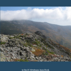 The Plants of Baxter State Park field guide, published on August 23 by the University of Maine Press.