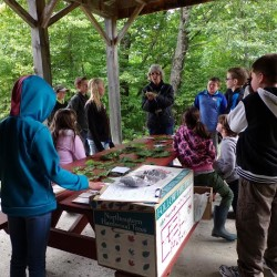 Mrs. Titcomb talking with 6th grade classes of PCES at the PCSWCD's Demonstration Forest in Williamsburg. The 6th grade teachers at PCES bring their students to the forest for a day of interactive learning each year.