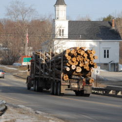 The driver of a westbound logging truck on Route 9 in Eddington.