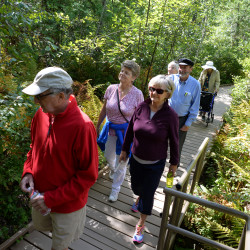 The Eastern Area Agency on Aging group Active Agers takes a recent tour of the Orono Bog Boardwalk with a Maine naturalist.