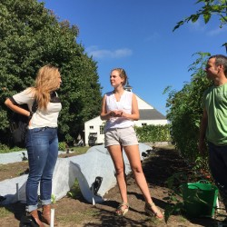 Student Heidy Morales (left) stops by Bowdoin College's organic garden to talk to fellow student Katherine Kirk (center) and garden supervisor Jeremy Tardif on Sept. 20 in Brunswick.