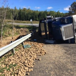 A Caribou man was injured in a midmorning tractor-trailer crash on Monday, Sept. 26, 2016, after police say the bulk truck he was operating overturned and spilled its load of potatoes in Connor Township. Aroostook County Sheriff Darrell Crandall said that the truck driver suffered non life threatening injuries.