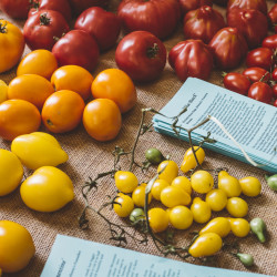 Colorful tomatoes were on display Sunday evening during the first annual Seed to Table Variety Tasting at the Unity Food Hub, held by Johnny's Selected Seeds and the Unity Food Hub.