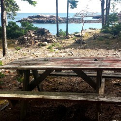 A picnic table sits undisturbed earlier this summer at an oceanside camp site at the defunct Ocean Wood Campground, which closed in 2009. Philanthropist Roxanne Quimby bought the campground last week at auction and plans to reopen it.