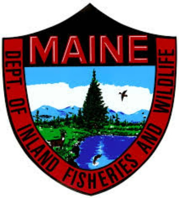 Communications experts hired by the Fisheries and Wildlife Department
