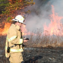 Brunswick Fire Chief Ken Brillant, seen here at an April 2016 fire near Route 1, was named Fire Chief of the Year Wednesday by the Maine Fire Chiefs' Association.