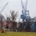 A man walks a dog in Bath's South End Park on Washington Street with the cranes of Bath Iron Works seen in the distance.