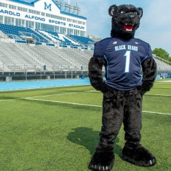 """Bananas T. Bear,"" the mascot for the University of Maine Black Bears"