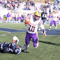 University of Maine linebacker Sterling Sheffield (left) sacks University at Albany quarterback Neven Sussman on a key fourth-quarter play during Saturday's Colonial Athletic Association football game at Alfond Stadium in Orono. The Black Bears knocked off the No. 17 Great Danes 20-16.