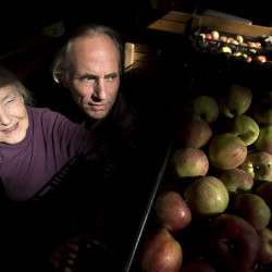 Leslie Cummins and Tim Seabrook own Five-Star Nursery and Orchard in Brooklin, but they are considering selling the farm where they grow apples, pears and make apple cider. They would like to sell their land to someone who would continue using it as a farm instead of developing the property.