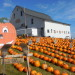 County pumpkin grower pleased to see new farm owners continue tradition