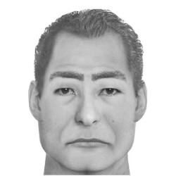 The Waldo County Sheriff's Office has released a sketch of the man who allegedly sexually assaulted a woman in Lincolnville earlier this month.