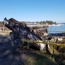 A 31-foot lobster boat owned by Todd Nickles was destroyed by fire Saturday night.