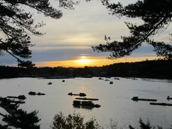 The sun sets over Northeast Harbor late Thursday afternoon. The harbor's mooring field, which is crowded from late spring through early fall, is sparsely occupied in the colder months, reflecting the village's increasing seasonality.