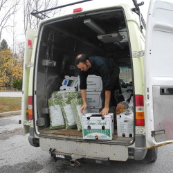 Graham Mallory, who works at North Branch Farm in Monroe, unloads boxes packed with the farm's biweekly vegetable share on Thursday afternoon at the pickup location at Waldo County General Hospital in Belfast.