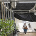 Daily operations continue around the clock in a legal marijuana growing facility in Monterey County on Oct. 6, 2016 near Salinas, California.
