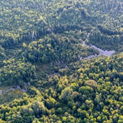 Conservation easement protects No. 5 Mountain