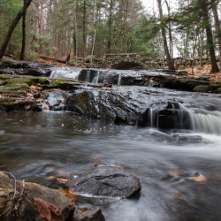 Task force says parts of Maine experiencing drought