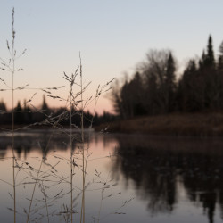 Daylight hits the Aroostook River in Oxbow Plantation on Nov. 8.