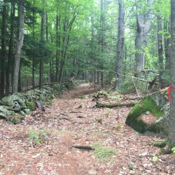 A volunteer group, the Windjammer Trailblazers has formed to coordinate efforts to build a